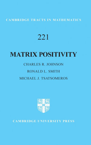 MATRIX POSITIVITY