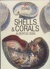 SHELLS & CORALS.