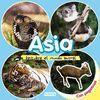 ASIA. DESCUBRE EL MUNDO ANIMAL.