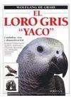 EL LORO GRIS ´ YACO ´