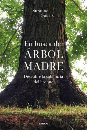 EN BUSCA DEL ARBOL MADRE